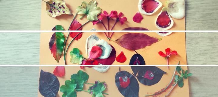 Colaj cu flori naturale